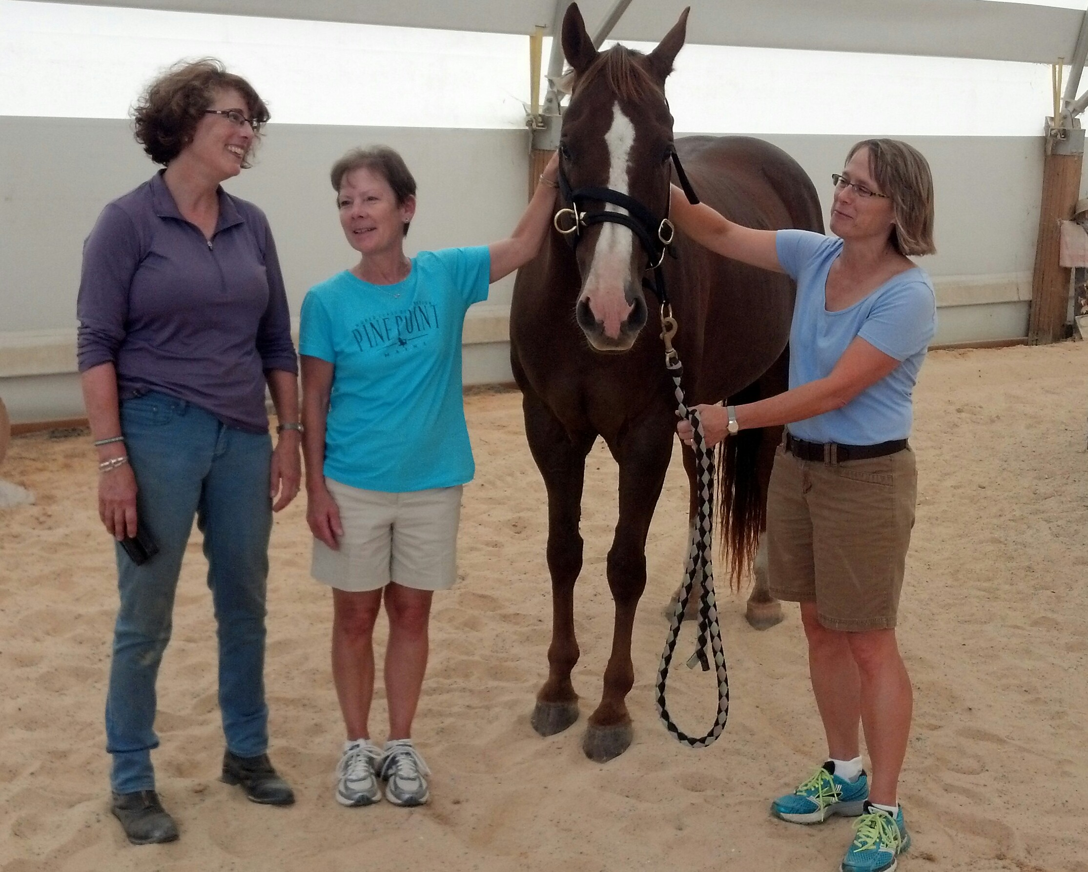 Equus Story: Ann and Joann, academics in transition